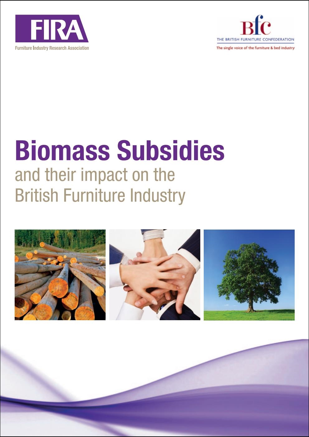 Cover-Biomass-Report-2011.jpg#asset:1191:url
