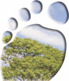 Footprint.jpg#asset:13321:url