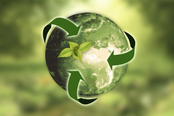 Sustainability training for the furniture industry with FIRA International