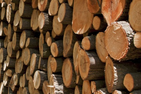 Vietnam-EU legal timber agreement signed